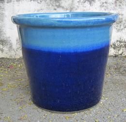 6631 Ming Blue