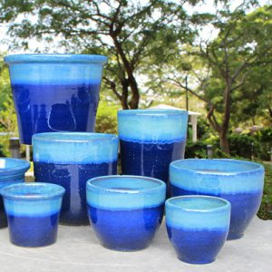 Ming Blue Collection