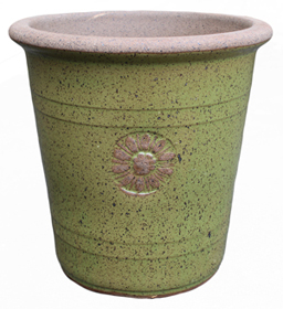 6529 Japan Pot - SSM Medallion Sugar Cane